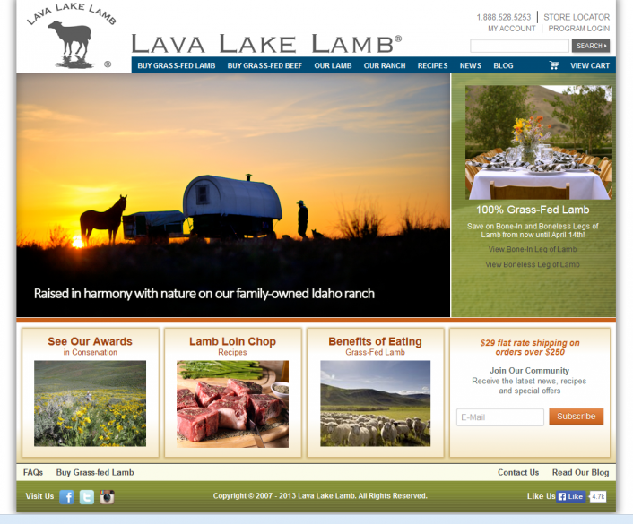 lava lake lamb